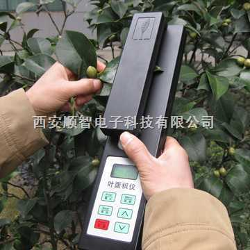 杭州上海YMJ-A叶面积测量仪