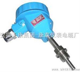 wzp-240工业用隔爆热电阻