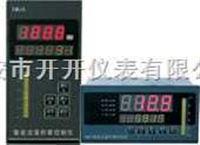 XMJA-9000 智能流量积算控制仪