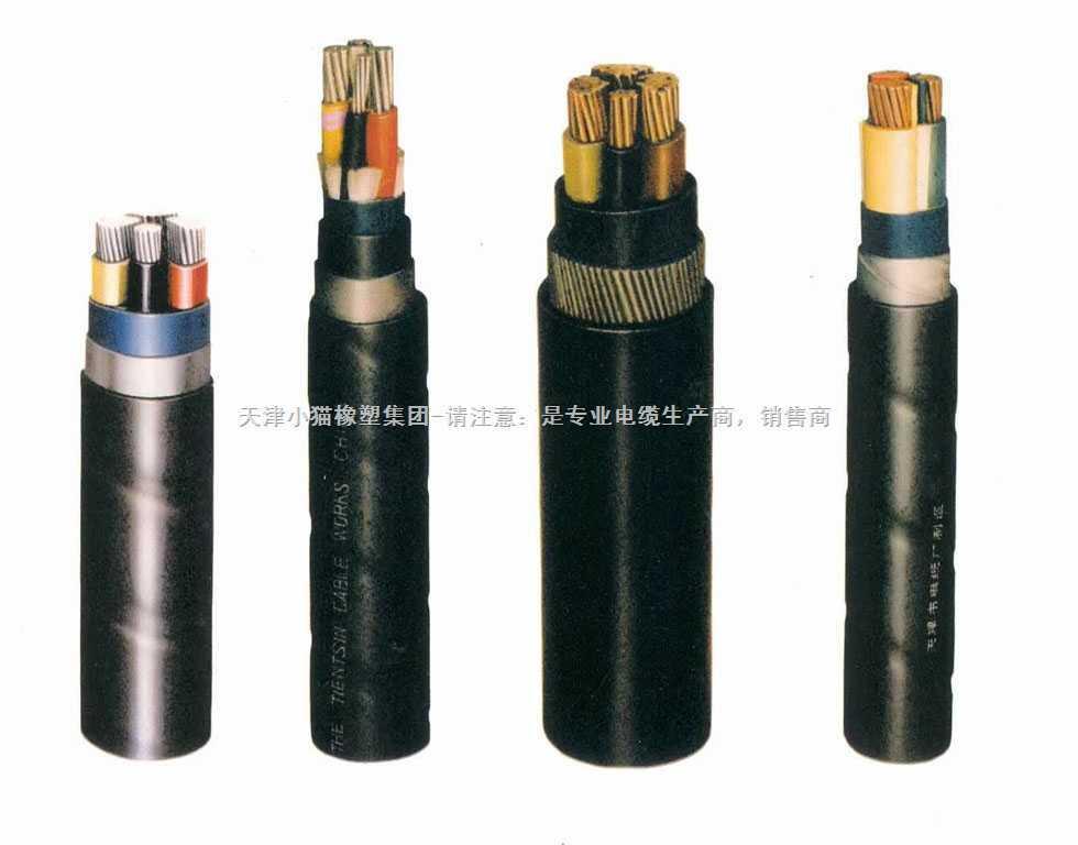 VLV VLV22小猫牌钢带铠装护套电力电缆-专业