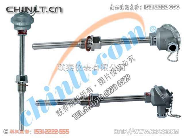 WZP2-220 装配式双支铂热电阻