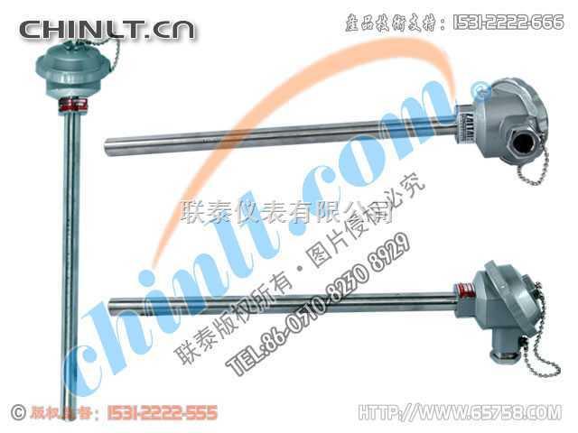 WZP-120 装配式铂热电阻