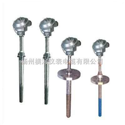 专用高耐磨水泥厂化工热电阻