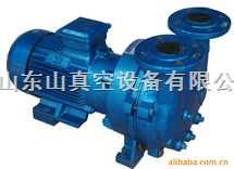 水环式真空泵(2bv5111)