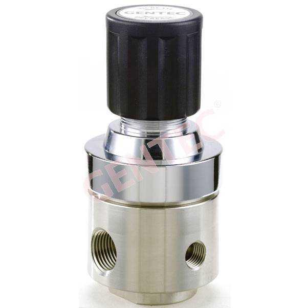 R22SLGK-DIG-R22膜片式不锈钢减压器