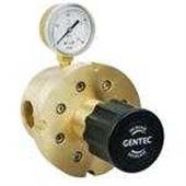R66B低压大流量减压器