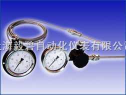 WTY系列-液体压力式温度计