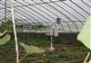 RYQ-1温室大棚小气候观测站