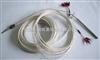 WZPM-201/WFLM-2611电厂给水泵防油热电阻WZPM-201/WFLM-2611