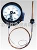 WTZ-288壓力式溫度計