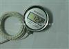 DH-W系列就地温度显示仪