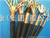 DJYP2V22P2计算机电缆